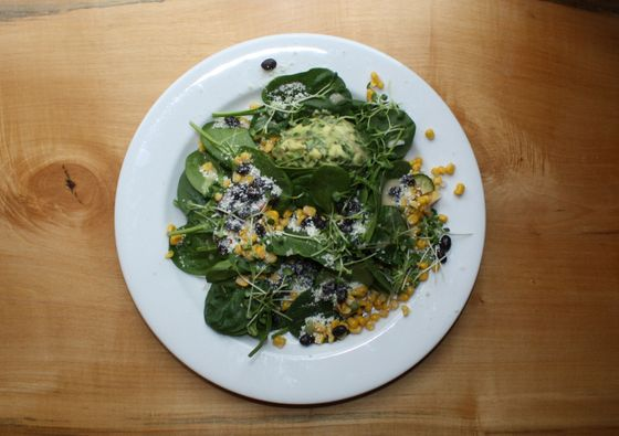 Jackson Heights: Baby spinach, corn and black bean salad, cotija cheese, avocado salad, and micro choi.