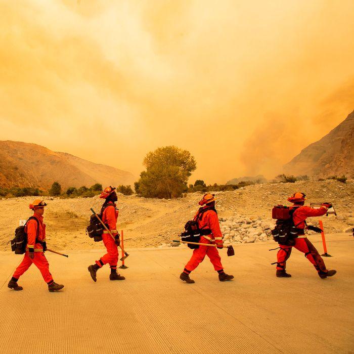 Imprisoned firefighters in California.