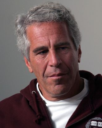 The late financier and convicted sexual abuser Jeffrey Epstein.