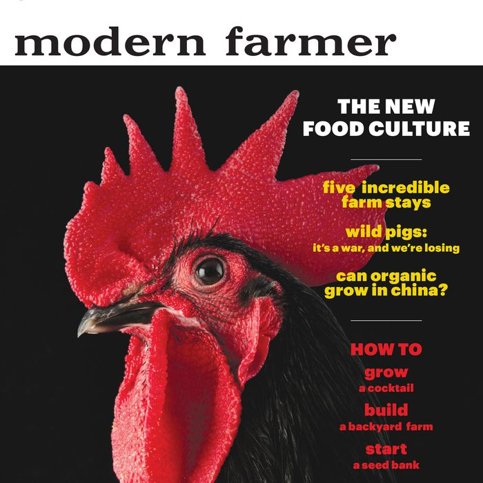 The magazine's first issue.