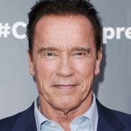 Arnold Schwarzenegger Thinks Washington Is Bonkers Enough Without Him ...  Arnold Schwarzenegger