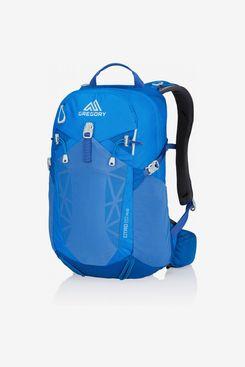 Gregory 20L Citro Backpack