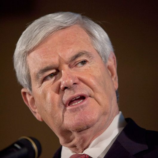 Republican presidential candidate, former Speaker of the House of Representatives Newt Gingrich speaks at a Public Service of New Hampshire (PSNH) town hall meeting on January 9, 2012 in Manchester, New Hampshire.