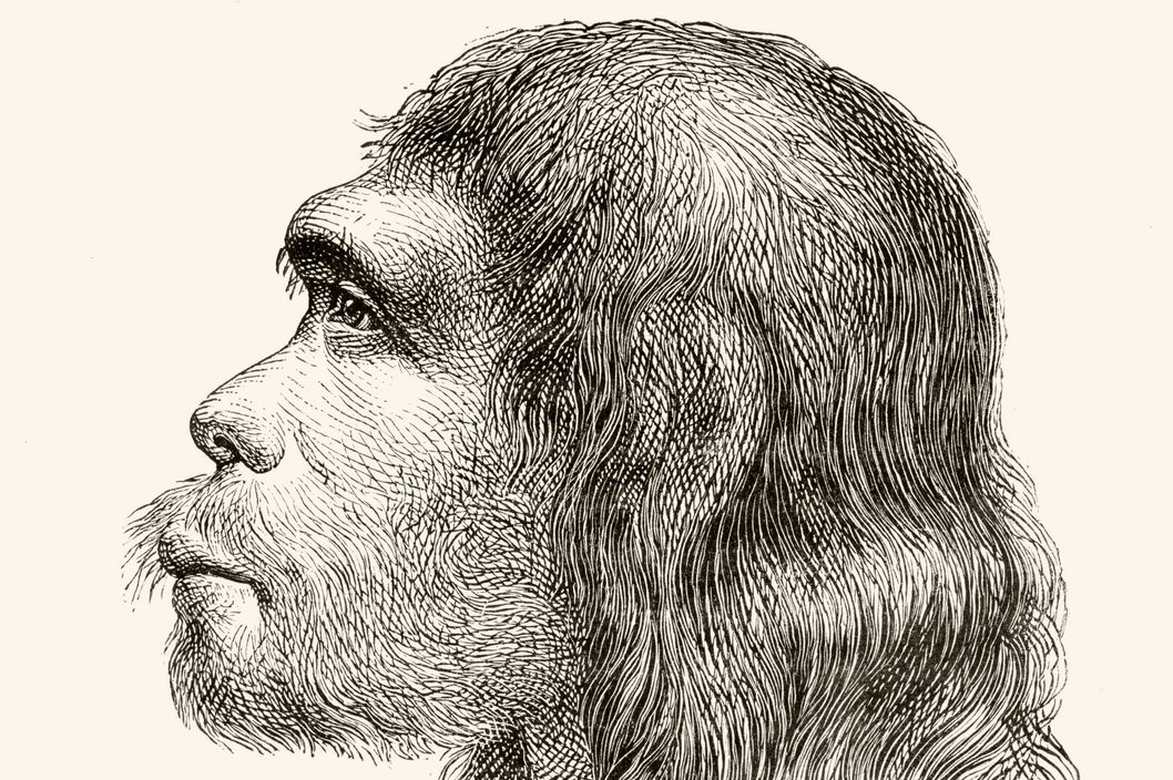 relationship between neanderthals and modern humans Neanderthals and the relationship to modern humans one may ask, what is the relationship between neanderthals and modern humans many seem to think that neanderthals were a different kind of species hominid from homo sapiens also referred to as homo neanderthalensis,.