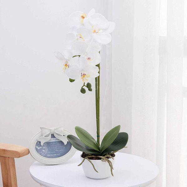 LIVILAN Silk Phalaenopsis Orchid in White Vase