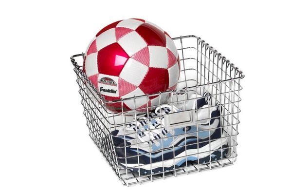 Spectrum Diversified Medium Storage Basket