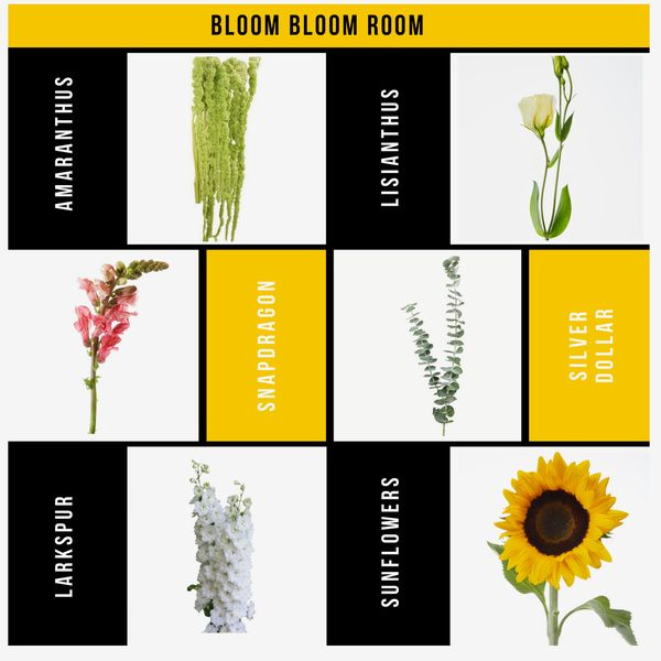 Postal Petals Beanie Box Bloom Bloom Room