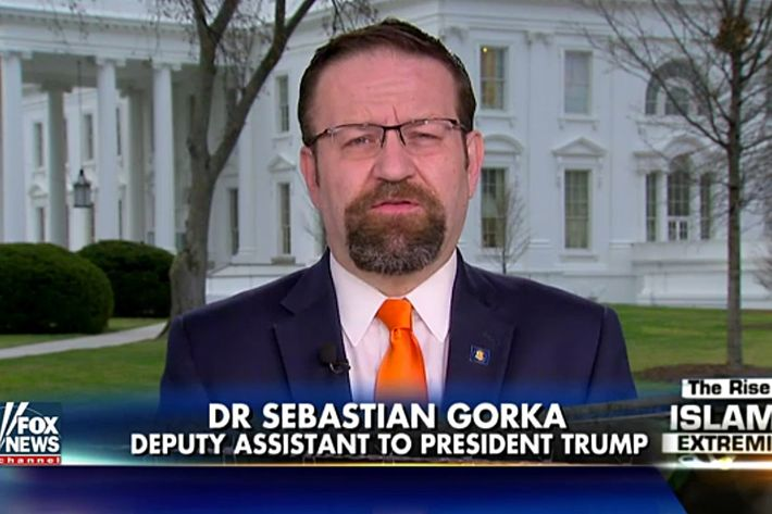 Image result for MCMASTER GORKA
