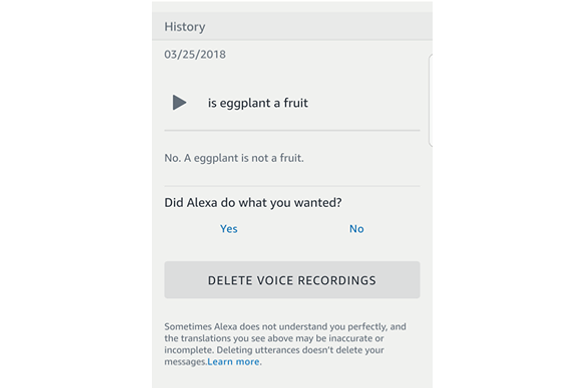 A chat log between the author and Amazon Alexa