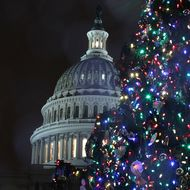Capitol Hill Christmas Tree Lighting Ceremony