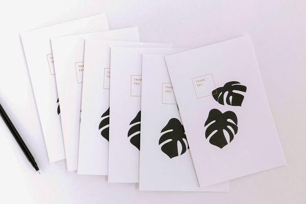 Thank You Cards by Noat (Box of 6)