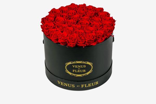 Venus et Fleur Large Round Arrangment, 36 Roses