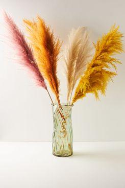 Anthropologie Home Dried Pampas Grass Three-Stem Bouquet