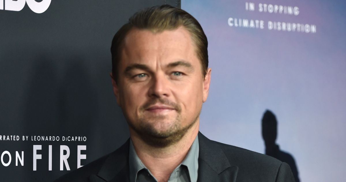 Well, At Least Leonardo DiCaprio Is Trying to Do Something About the Amazon Fires