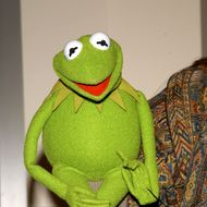 Muppet Kermit the Frog