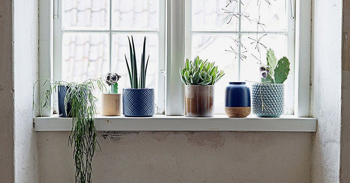 The Best Pots And Planters On Amazon 2020 The Strategist New York Magazine