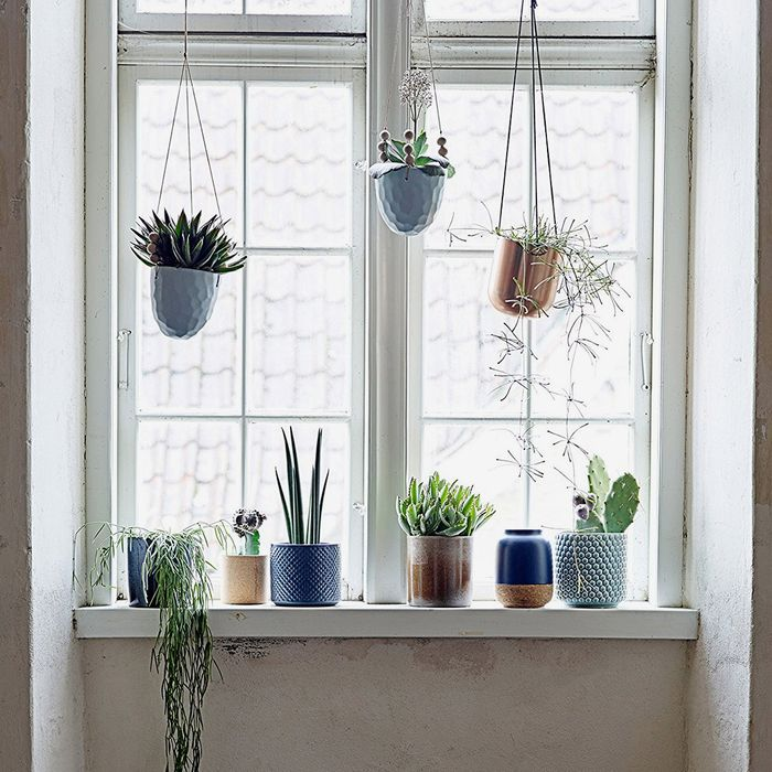 26 Best Pots And Planters On 2019 The Strategist New