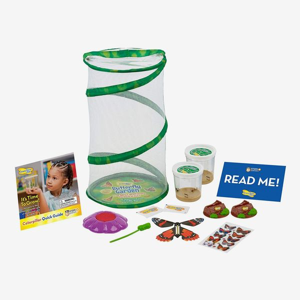 Insect Lore Mini Butterfly Garden Gift Set