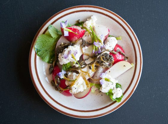 Radishes with house-made ricotta.