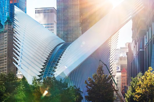 The World Trade Center Transportation Hub by Spanish