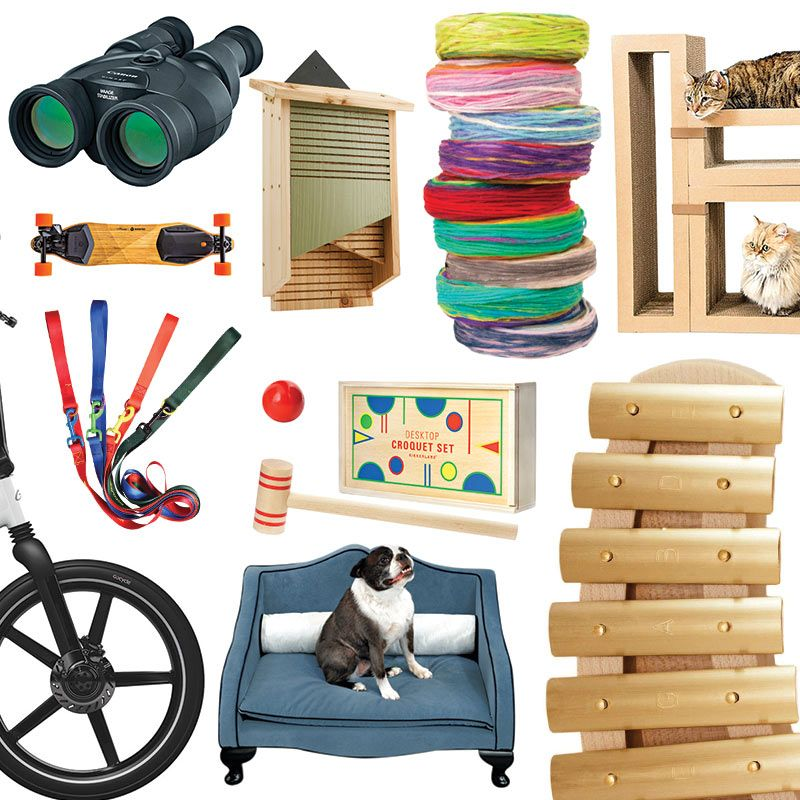sc 1 st  The Cut & 33 Gift Ideas for Hobbyists and Pet Owners