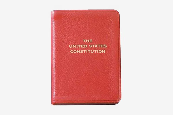United States Mini Constitution