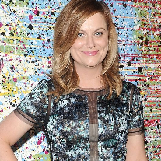 NEW YORK, NY - MAY 06:  Amy Poehler attends the The Shield Institute and Pure Vision Arts Celebration at Metropolitan West on May 6, 2015 in New York City.  (Photo by Daniel Zuchnik/WireImage)