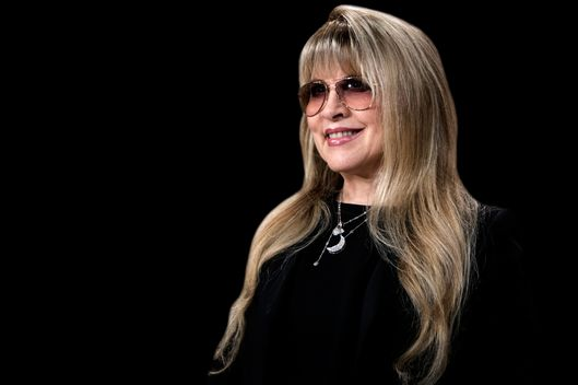 15 things you didnt know about stevie nicks vulture hkg9561400 photo afp stand back stevie nicks m4hsunfo