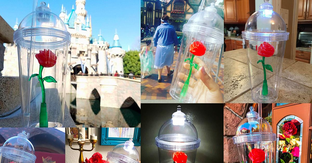 Why This Red Rose Cup At Disneyland Went Viral