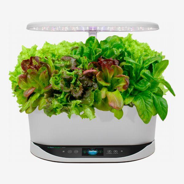 AeroGarden Bounty Heirloom Salad