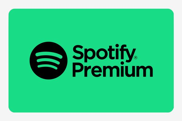 Spotify Gift Card (6 Months)