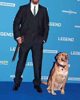 Tom Hardy and Woody.