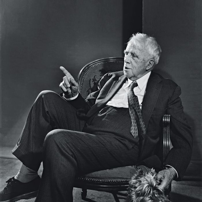 our hold on the planet robert frost analysis
