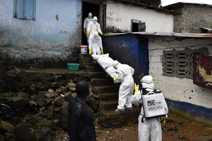 Medical staff members of the Croix Rouge NGO remove the corpse of a victim of Ebola, from a house in Monrovia, on September 29, 2014. Of the four west African nations affected by the Ebola outbreak, Liberia has been hit the hardest, with 3,458 people infected -- more than half of the total number of cases. Of those, 1,830 have died, according to a WHO count released on September 27.