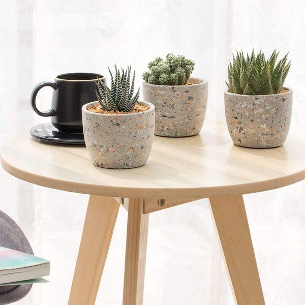 T4U 4-Inch Cement Succulent Pot (Set of 3)