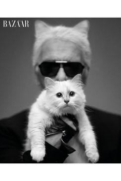 Karl and Choupette, shot by Lagerfeld himself.