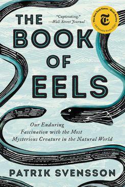 帕特里克·斯文森的《鳗鱼之书》