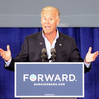 Vice President Joe Biden speaks during a campaign stop at the Spiller Elementary School in Wytheville, Va., Tuesday, Aug. 14, 2012. Biden traveled to southern and southwestern Virginia to discuss the choice voters have in Virginia. A choice between two fundamental differences in visions of how to grow the economy, create middle-class jobs and pay down the debt. (AP Photo /Don Petersen)