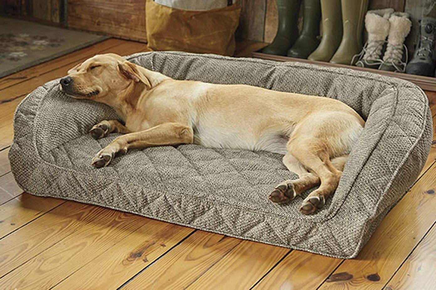 ORVIS Memory Foam Deep Dish Dog Bed