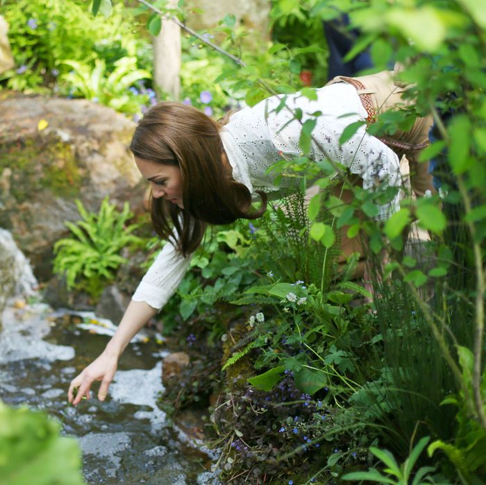 Kate Middleton at the Chelsea Flower Show.