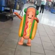 Hot Dog Suit Costume