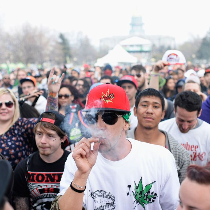 4d8bf945902d From Drug War to Dispensaries  An Oral History of Weed Legalization s First  Wave