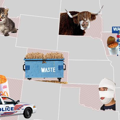 the year in weird 2013 lowlights from all 50 states