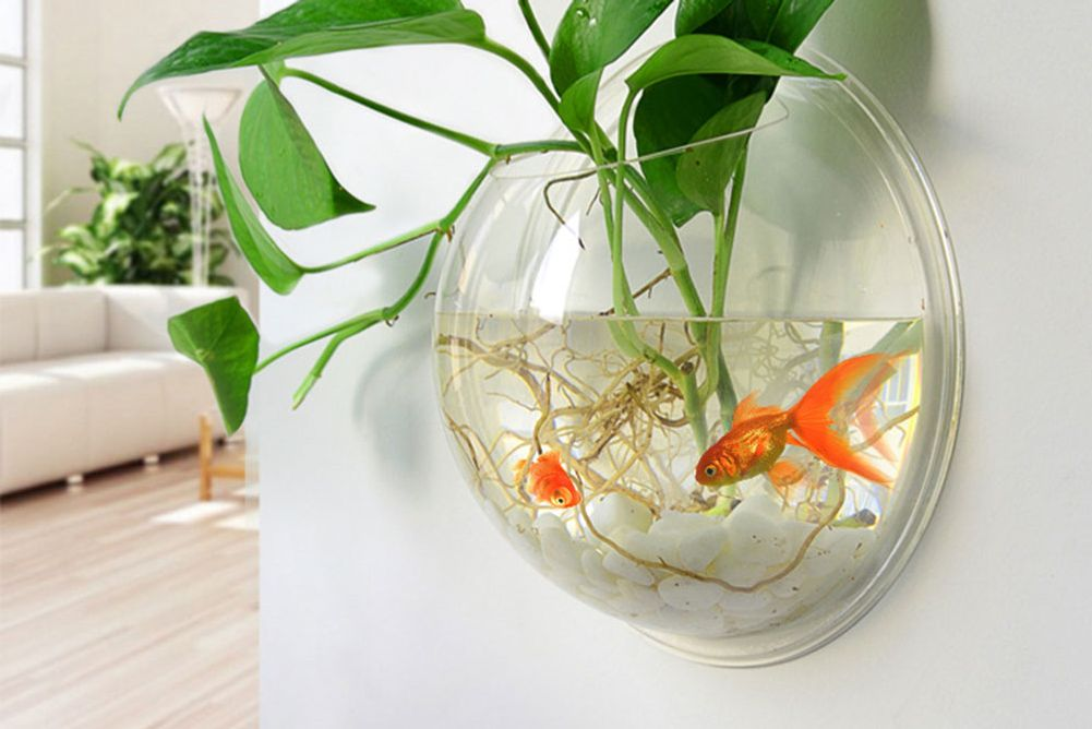 The best wall decor is a fishless fishbowl for Acrylic fish bowl