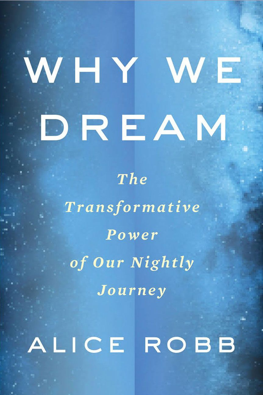 Why We Dream, by Alice Robb