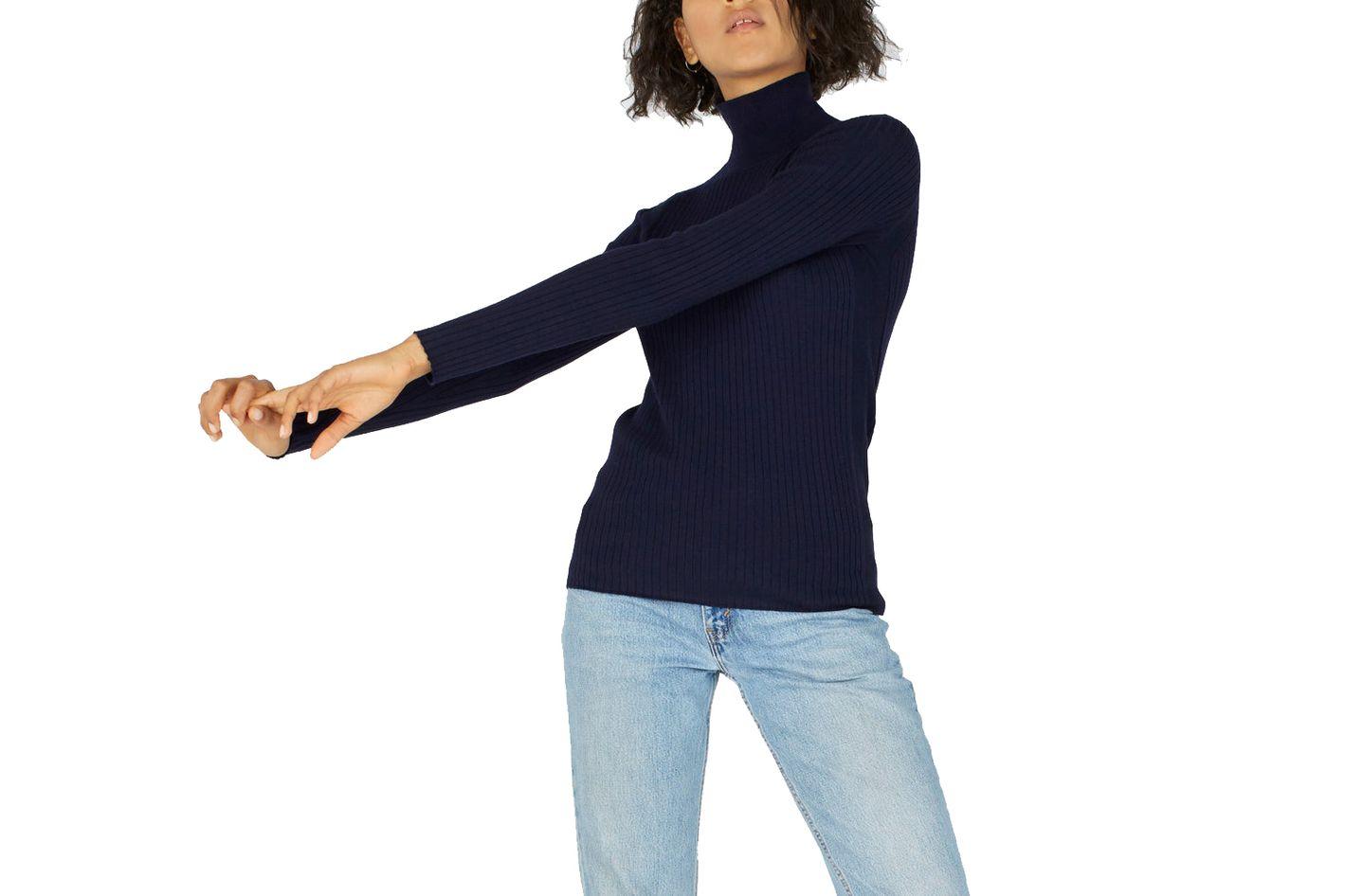 Everlane Luxe Wool Ribbed Turtleneck