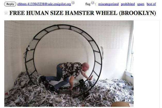 Dog Sized Hamster Wheel a Human-size Hamster Wheel