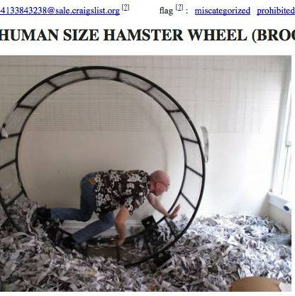 Q A With A Brooklyn Man Giving Away His Human Size Hamster Wheel On