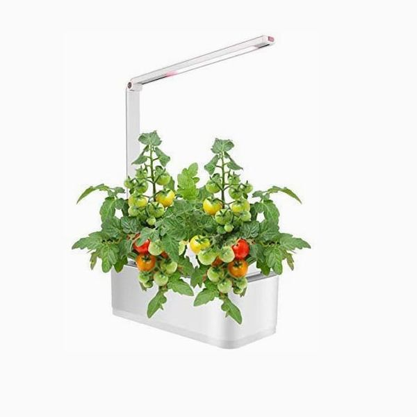 Scottish Boy Intelligent Hydroponic Indoor Herb Garden Hydroponics Growing System Starter Kit With Grow Light