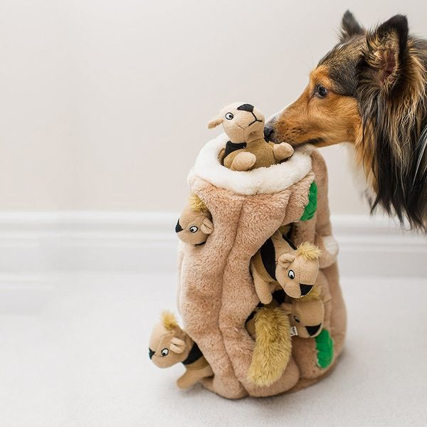 Outward Hound Hide-A-Squirrel and Puzzle Plush